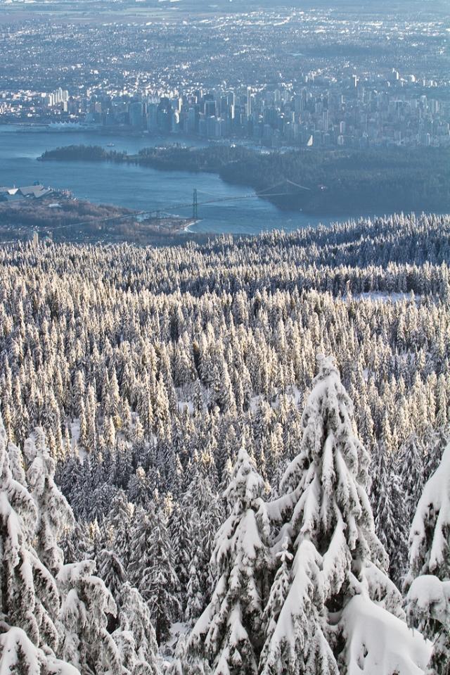 Vancouver en hiver