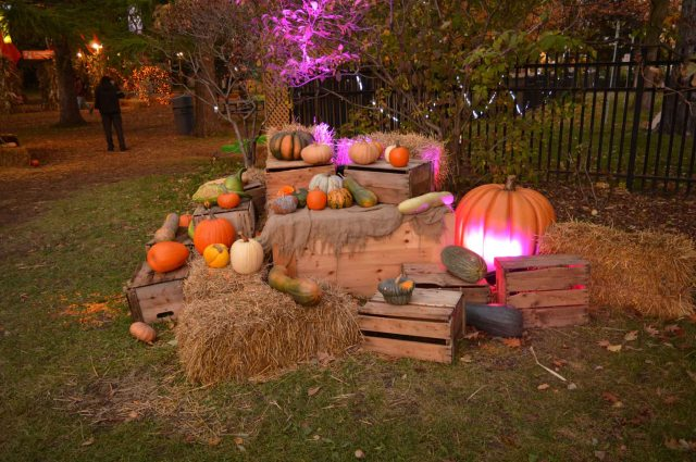 Halloween Montreal